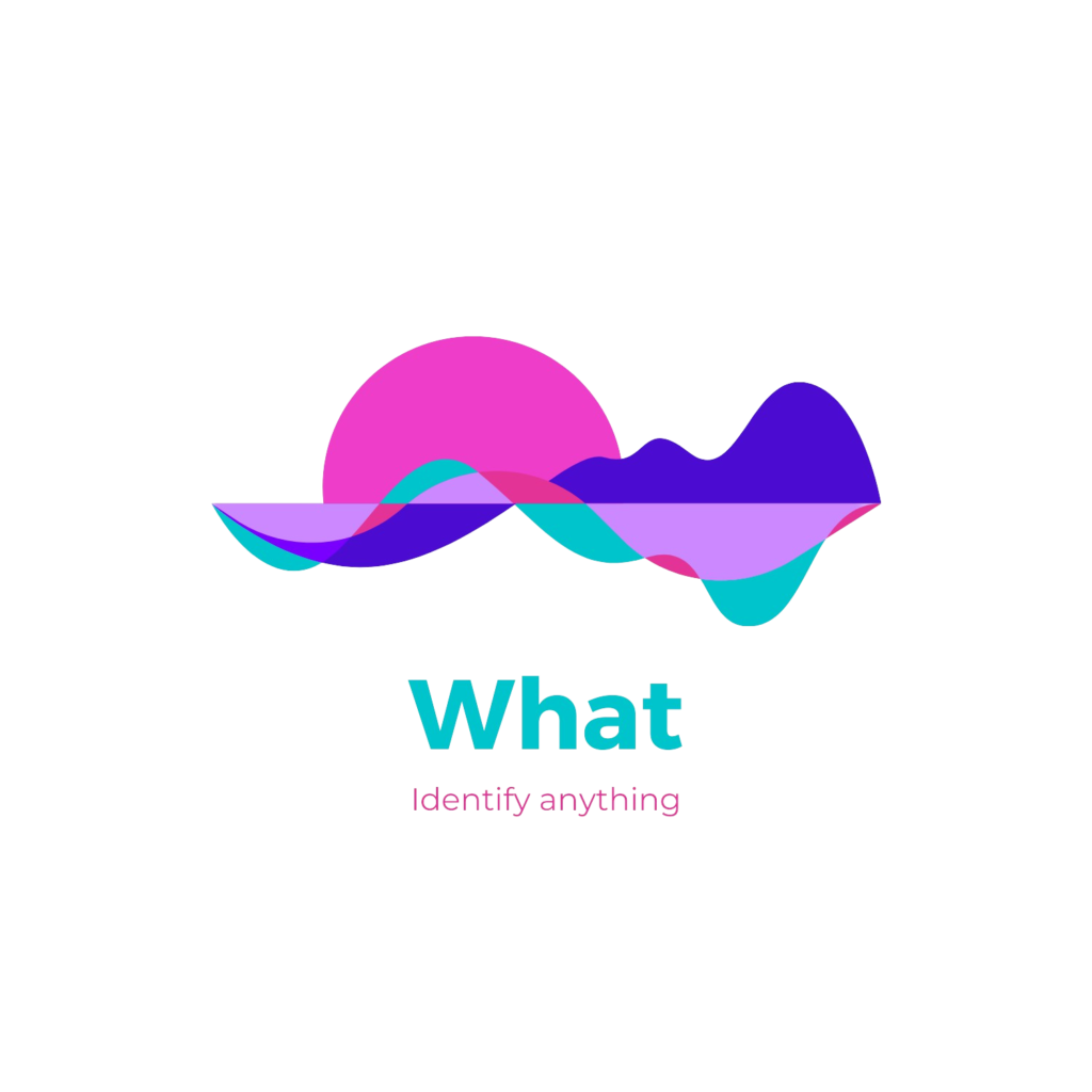 pywhat